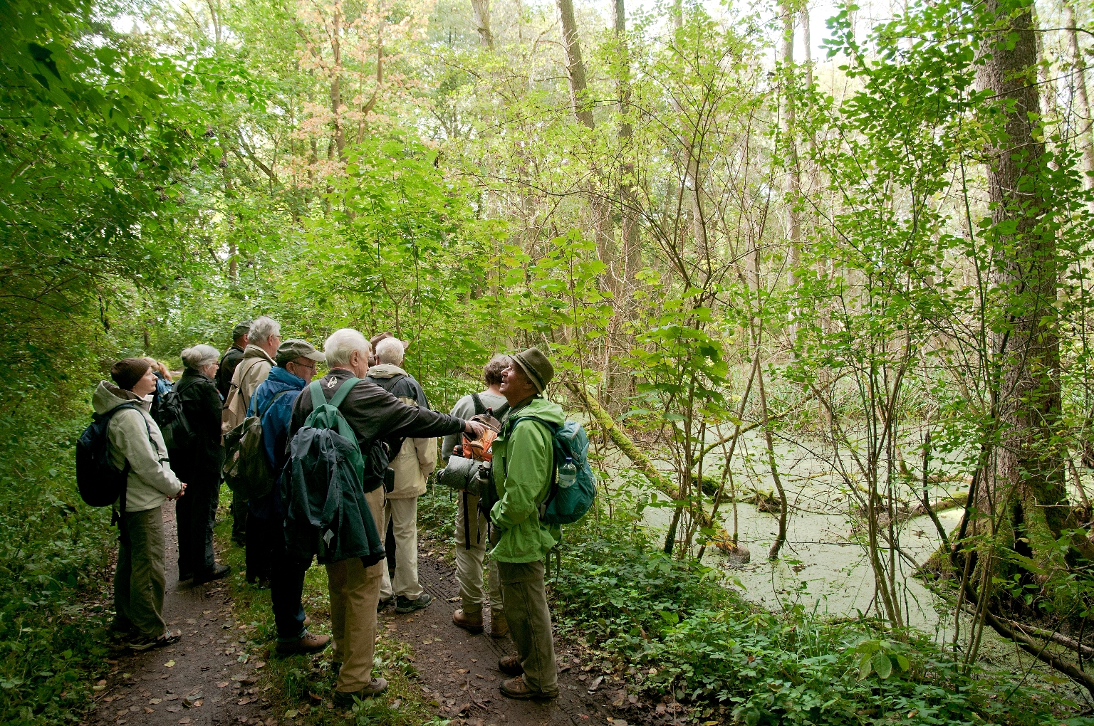 Wildnis Deutschland Wanderreise Tag des Waldes Die Landpartie